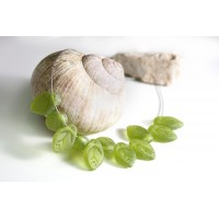 Czech Glass Beads Leaves Matte Olive Green, 7х12 mm, 40 pcs.