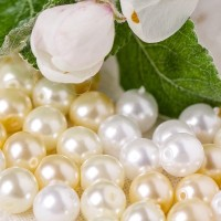 Czech Glass Faux Pearl Round Beads - White, Milk White and Champagne Mix, 6 mm